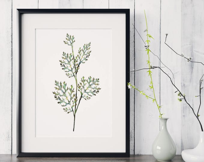 Botanical Leaf Print No.3 on Watercolour Paper - Fine Art Print of a Leaf Watercolour Painting