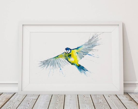 Blue Tit in Flight 5 - Signed limited Edition Print of My Original Watercolour Painting