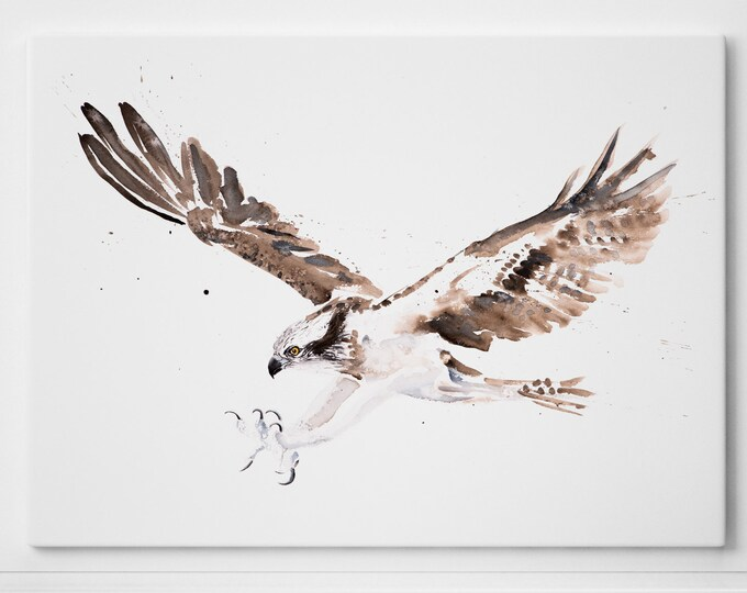 Osprey on Canvas - Osprey Painting - Modern Abstract Osprey Watercolour Art Print of my Watercolor Bird Painting Home Decor by Syman Kaye