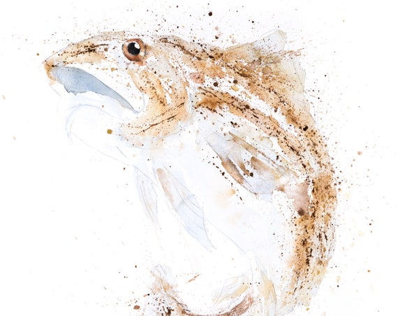Atlantic Cod Watercolour Painting Watercolour Hand Signed Dated Numbered and Embossed Limited Edition Print Cod Painting Cod Watercolor