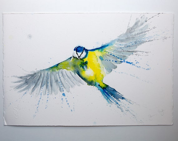 Blue Tit Original Watercolour Painting Bird Wall Art. Modern Water Colour Painting of Blue Tit by Syman Kaye