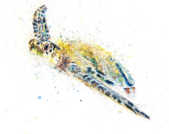 Turtle Wall Art Watercolor Painting Watercolour Painting  - Signed Limited Edition Print of my Original Watercolour Turtle Painting