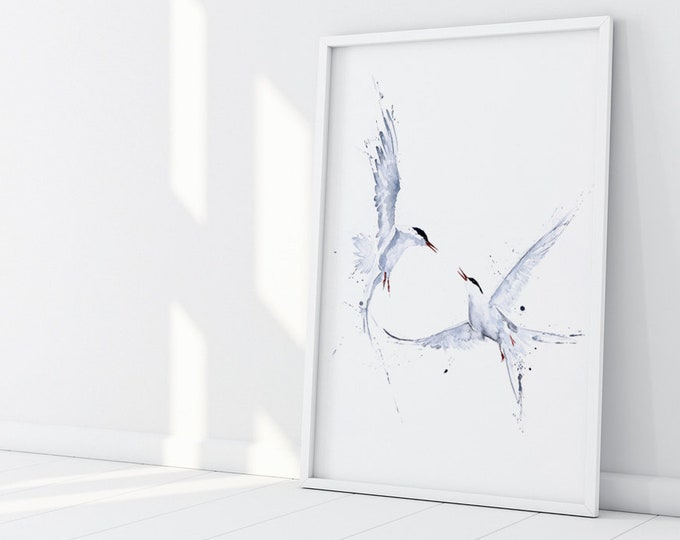 Arctic Angels Watercolour Painting - Hand Signed Limited Edition Print on Watercolour Paper of a Pair of Arctic Terns - Bird Living Room Art