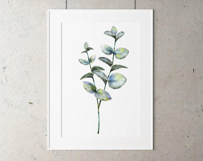 Botanical Eucalyptus Leaf Print on Watercolour Paper - Art Prints of Leaf Paintings