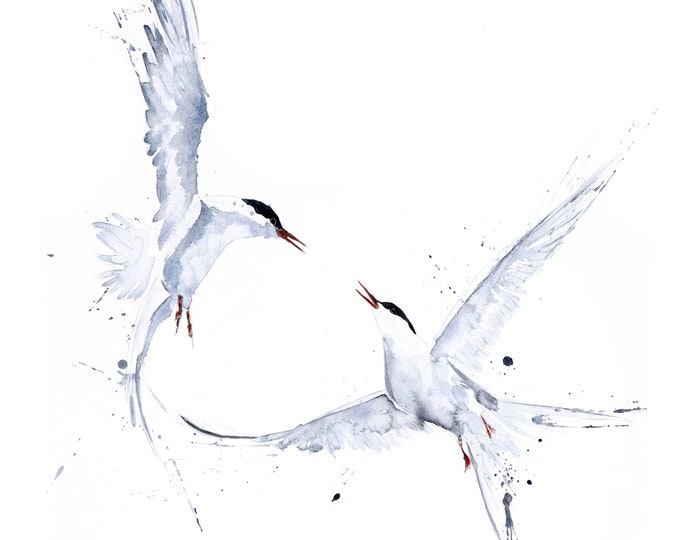 Featured listing image: Arctic Angels Watercolour Painting - Hand Signed Limited Edition Print on Watercolour Paper of a Pair of Arctic Terns - Bird Painting