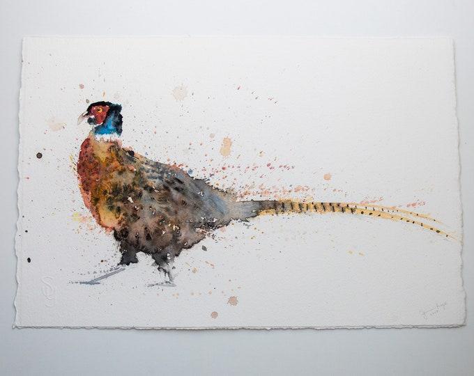 Pheasant Original Watercolour Painting by Syman Kaye. Pheasant Bird Art, Game Bird Painting