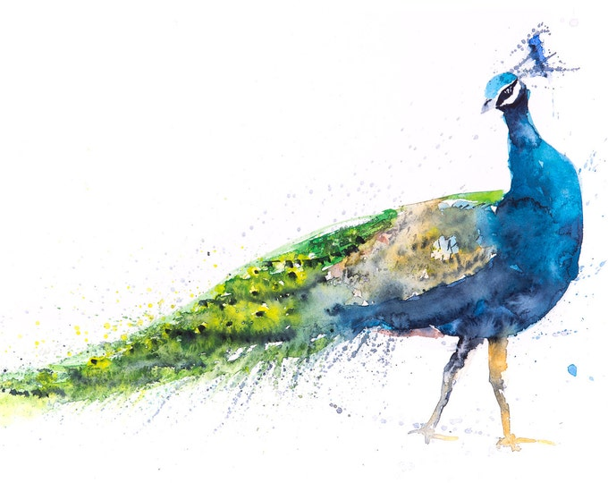 Peacock Painting No.1 Wall Art Watercolour - Signed Limited Edition Print from my Original Peacock Watercolour Abstract Animal Painting