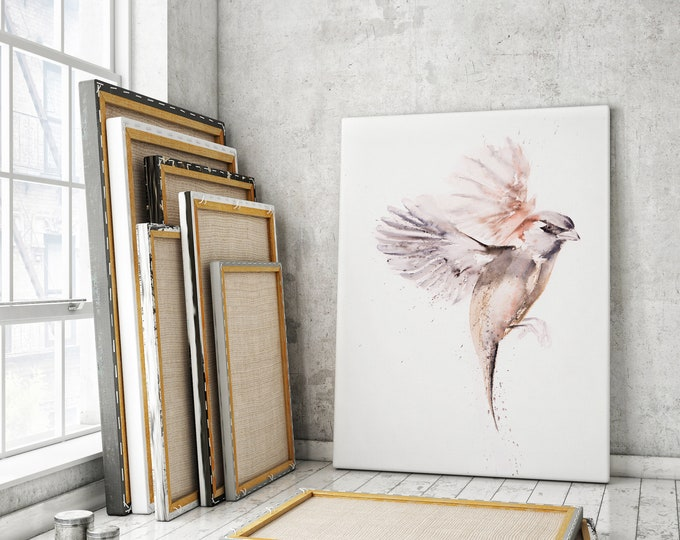 Sparrow Canvas Print- Hand Signed Sparrow Bird Painting - Modern Abstract Watercolour Art Print of my Watercolor Bird Living Room Art