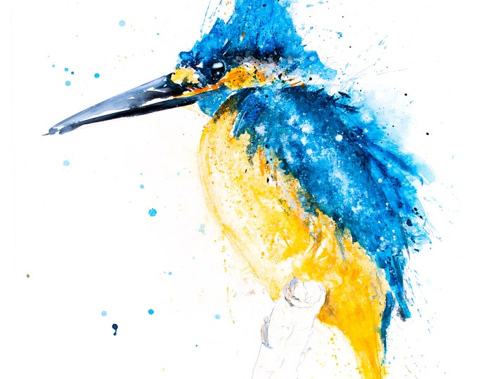 Kingfisher Painting - Kingfisher Watercolour Kingfisher Art Limited Edition Hand Signed Print of my Original Kingfisher Watercolor Painting