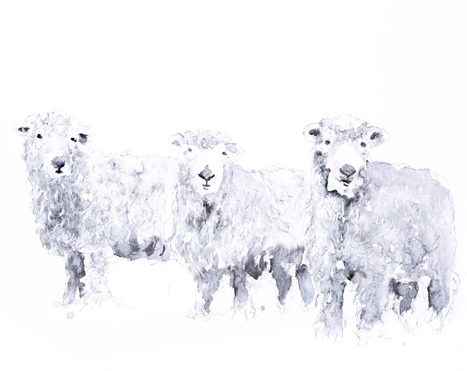 Grey Faced Dartmoor Sheep Watercolour Painting Watercolour Wall Art - Signed Limited Edition Print of my Original Watercolor Painting Sheep