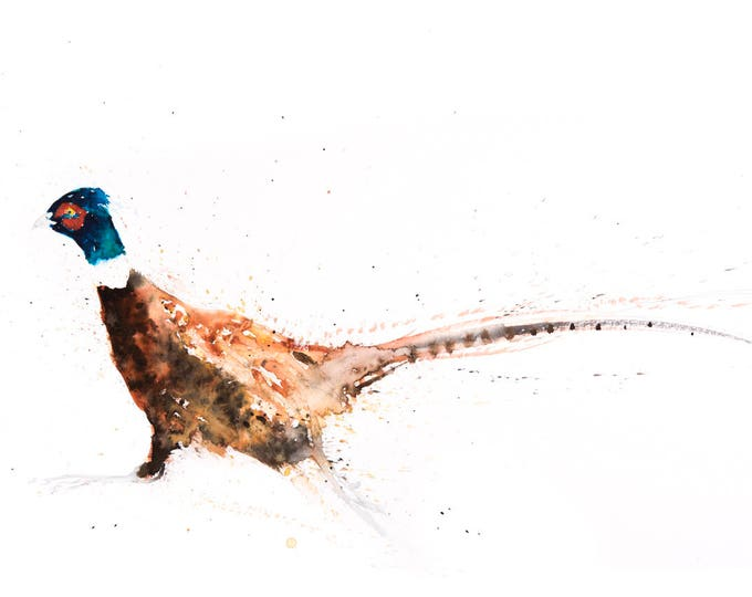 Pheasant no.9 - Signed, Limited Edition Print of my original watercolour painting of a Pheasant - Fine art animal Living Room Art