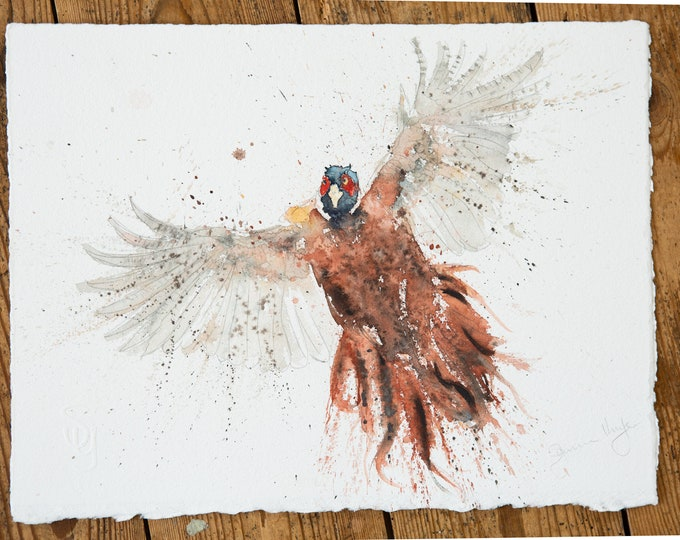 Flushed Pheasant Original Watercolour Painting by Syman Kaye Pheasant Bird Art