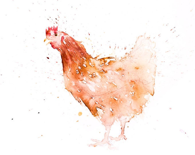 A Chicken - Signed Print of my original watercolour painting
