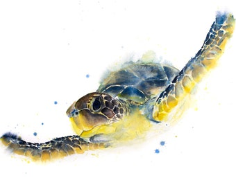 Turtle Watercolour Painting Chelys Galactica - Hand Signed Limited Print of my Original Watercolour Turtle Painting. Living Room Art