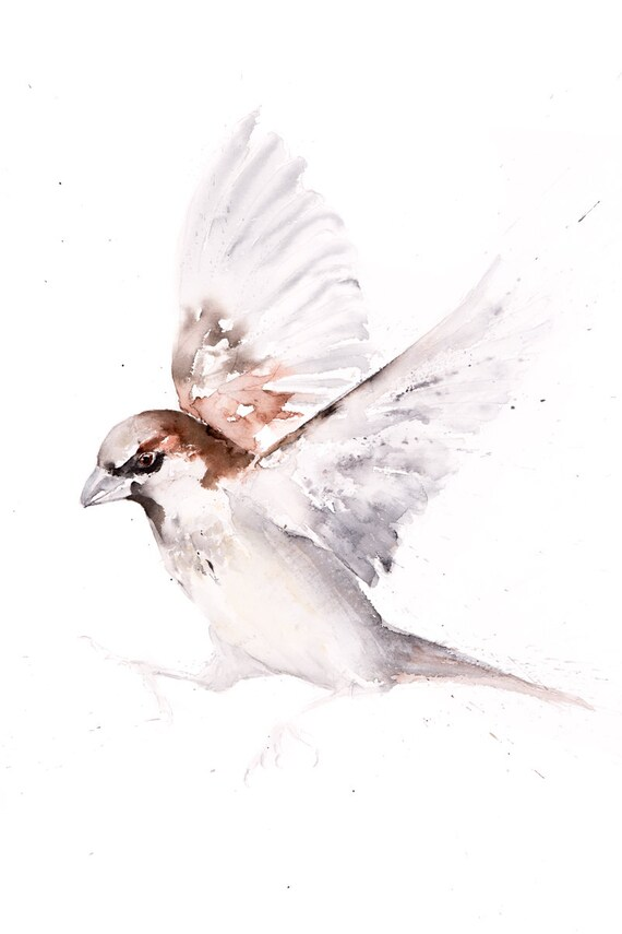 Sparrow Painting No.2  Sparrow Wall Art Hand Signed Numbered Embossed Limited Edition Print of my Watercolour Painting of a Sparrow