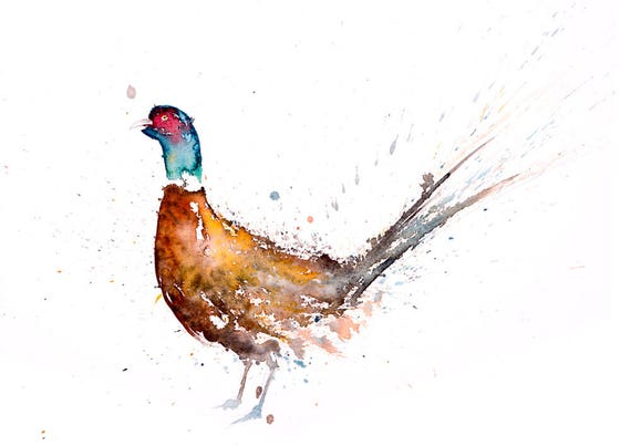 Pheasant no.7 - Signed Print of my original watercolour painting