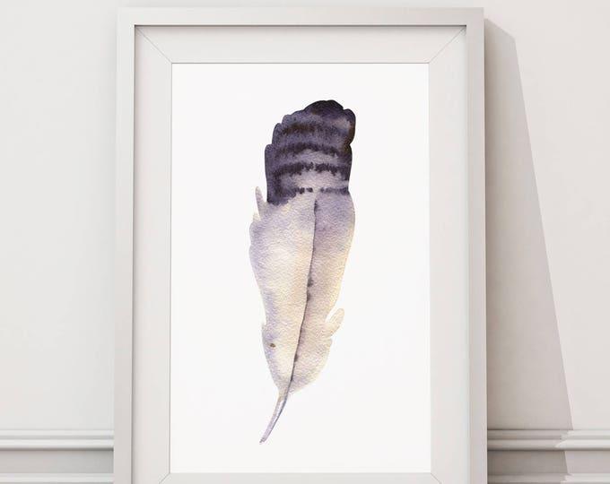 Feather No.5 Fine Art Prints on Watercolour Paper - Fine Art Prints of Feather No.5 Watercolor Paintings