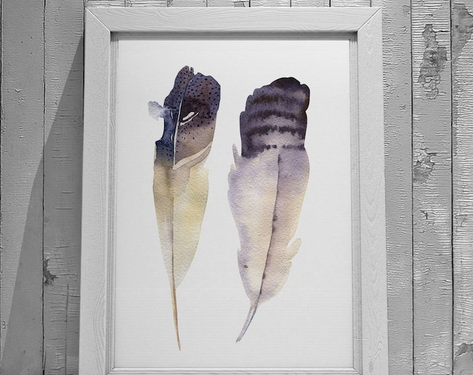 Feather No.4 and No.5 Fine Art Prints on Watercolour Paper - Fine Art Prints of Feather Watercolor Paintings