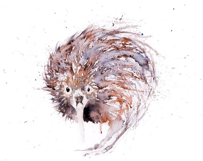 Baby Kiwi Bird - Limited Edition Signed Print of my original watercolour painting of a baby Kiwi Bird - Decorative wall art fine art print