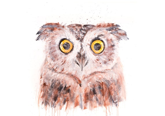 Owl no.3 - Signed Limited Edition Print of an Owl on Watercolour Paper