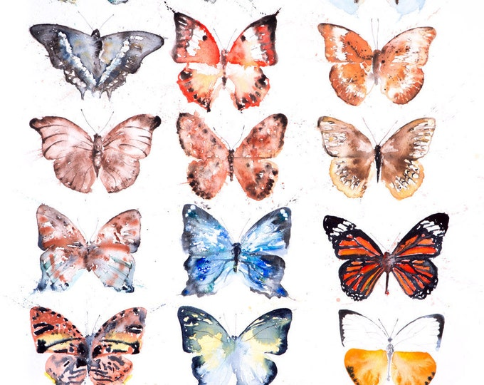 Butterfly Painting - Limited Edition Print of my Butterfly Watercolour - Modern Butterflies Wall Art Home Decor Gift