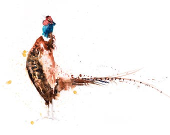 Pheasant no.8 - Signed, Limited Edition Print of my original watercolour painting of a Pheasant - Fine art animal prints  and paintings