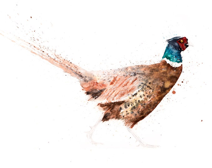 Pheasant Limited Edition Watercolour Print of My Original Watercolor Painting of a Pheasant. Modern Wall Art Home Decor Gift
