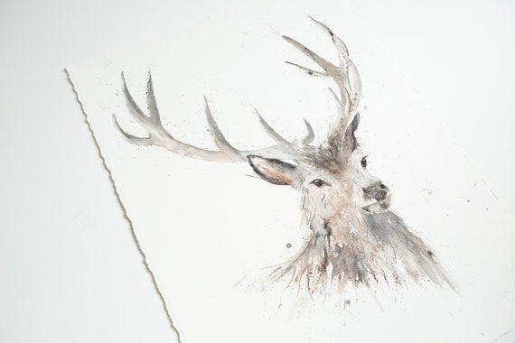 "Stag Original Painting Just a Boy - Original Watercolour Painting of a Stag 30""x22""  56cmx56cm Animal Wall Art"