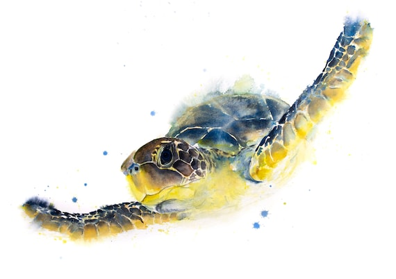 Original Turtle Painting Watercolour Painting - Signed Original Watercolour Turtle Painting by Syman Kaye - Sea Turtle Chelys Galactica