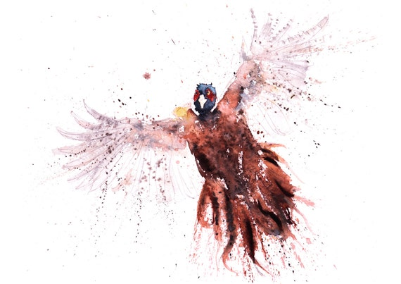 Pheasant Watercolour Painting - Hand Signed, Limited Edition Print of my Original Watercolour Painting of a Pheasant - Titled Pheasant No.6