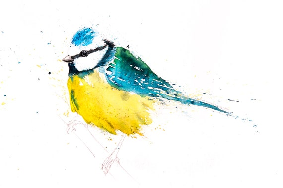 Blue Tit No.9 Wall Art - Hand Signed Limited Edition Print of my Original Watercolour Painting of a Blue Tit Bird