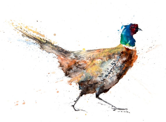 Pheasant No.2 - Hand Signed, Limited Edition Print of My Original Watercolour Painting of a Pheasant - Dated and Numbered