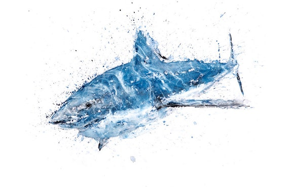 Shark Watercolor Painting Watercolour  Hand Signed Dated Numbered and Embossed Limited Edition Print of my Original  Great White Shark Art