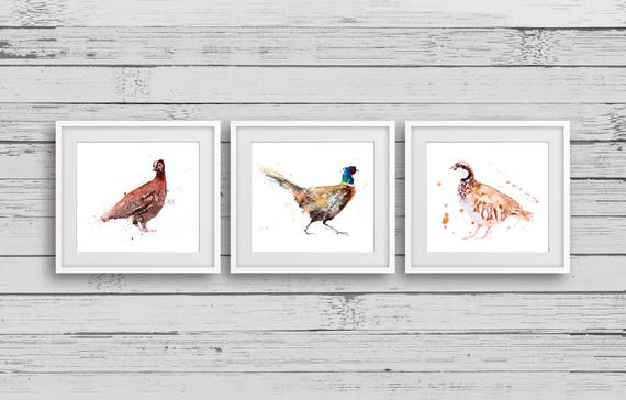 Partridge, Pheasant, Grouse watercolor watercolour Triptych 3 Prints - Signed limited edition prints of my original paintings of Game birds