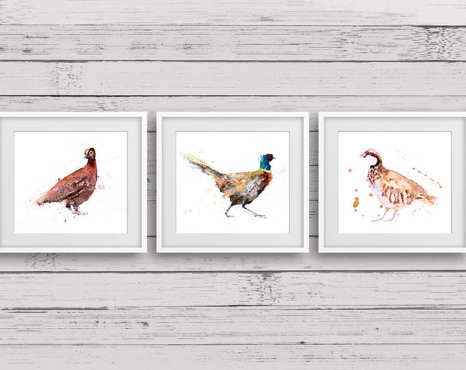 Partridge, Pheasant, Grouse watercolour Triptych Prints - Signed limited edition prints of my original Game Bird painting. Living Room Art