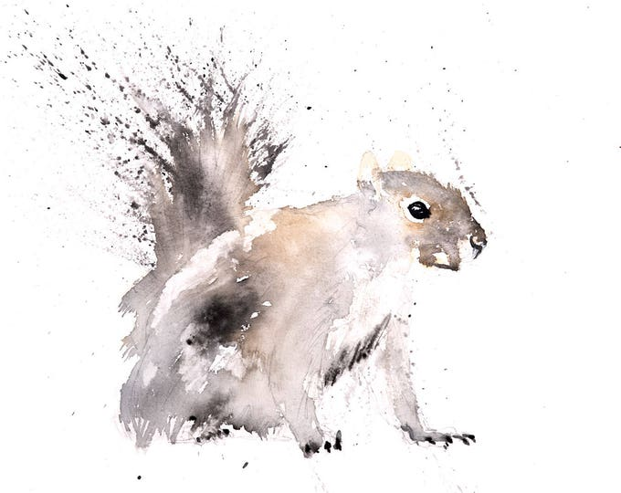 Grey Squirrel No.1 - Signed limited Edition Print of my Original Water Colour Painting of a Grey Squirrel