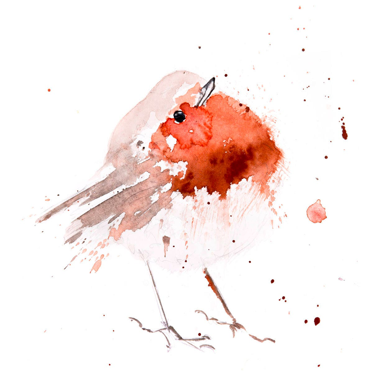 62f98c85982dc Fat Robin Red Breast No.4 - Hand Signed limited edition Print of my ...