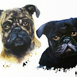 Custom Hand-painted Watercolor Pug Portrait from Photo, Custom Pet Painting, Original Painting of your Pet, Custom Pet Portrait