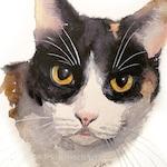 Custom Hand-painted Watercolor Calico Cat Portrait from Photo, Custom Pet Painting, Original Painting of your Pet, Custom Pet Portrait