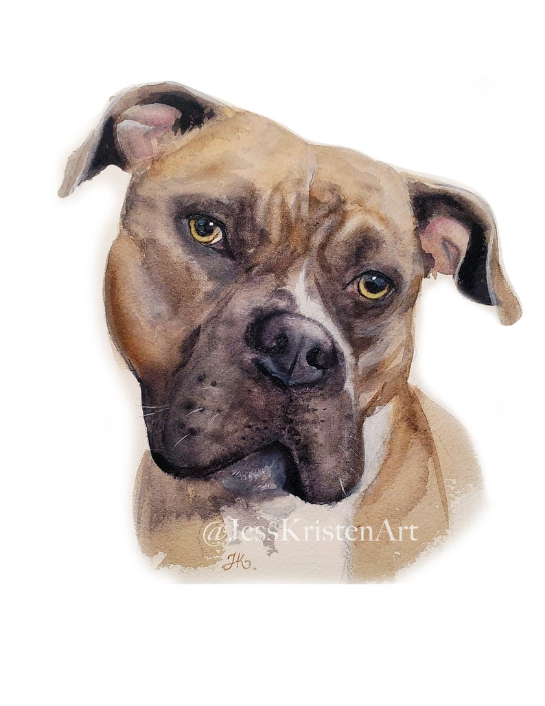 Custom Hand-painted Watercolor Pitbull Portrait from Photo image 0