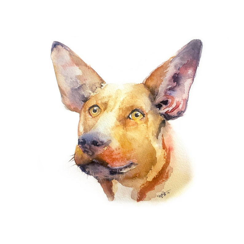 Custom Hand-painted Watercolor Mixed Breed dog Portrait from image 0