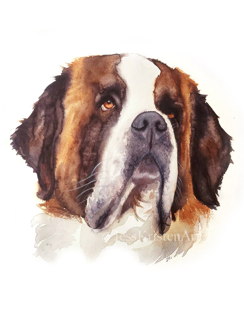Custom Hand-painted Watercolor St.Bernard Portrait from Photo image 0