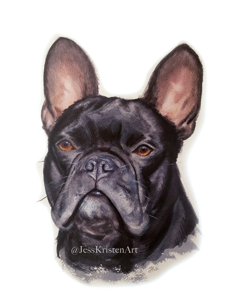 Hand-painted Watercolor French Bulldog Frenchie Portrait image 0