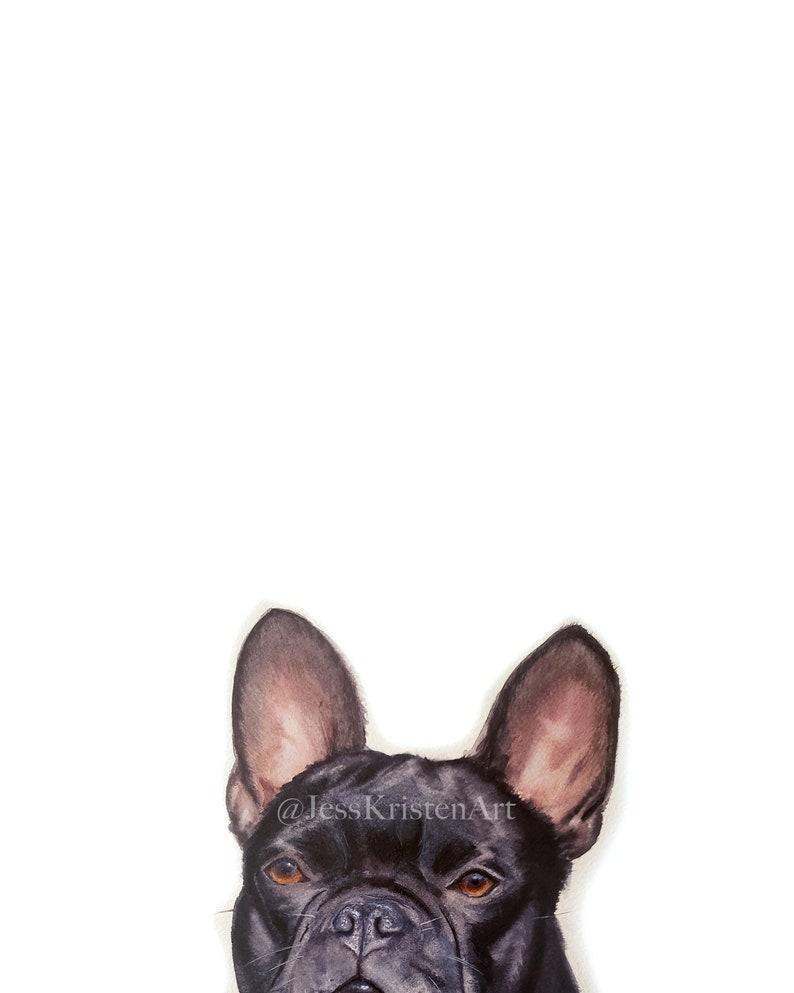 Custom PEAKABOO French Bulldog Pet Portrait Dog Portrait Pet image 0