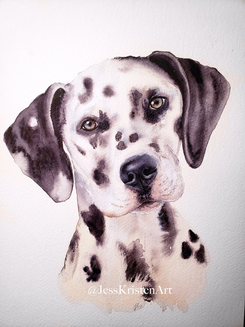 Custom Hand-painted Watercolor Dalmatian Dog Portrait from image 0