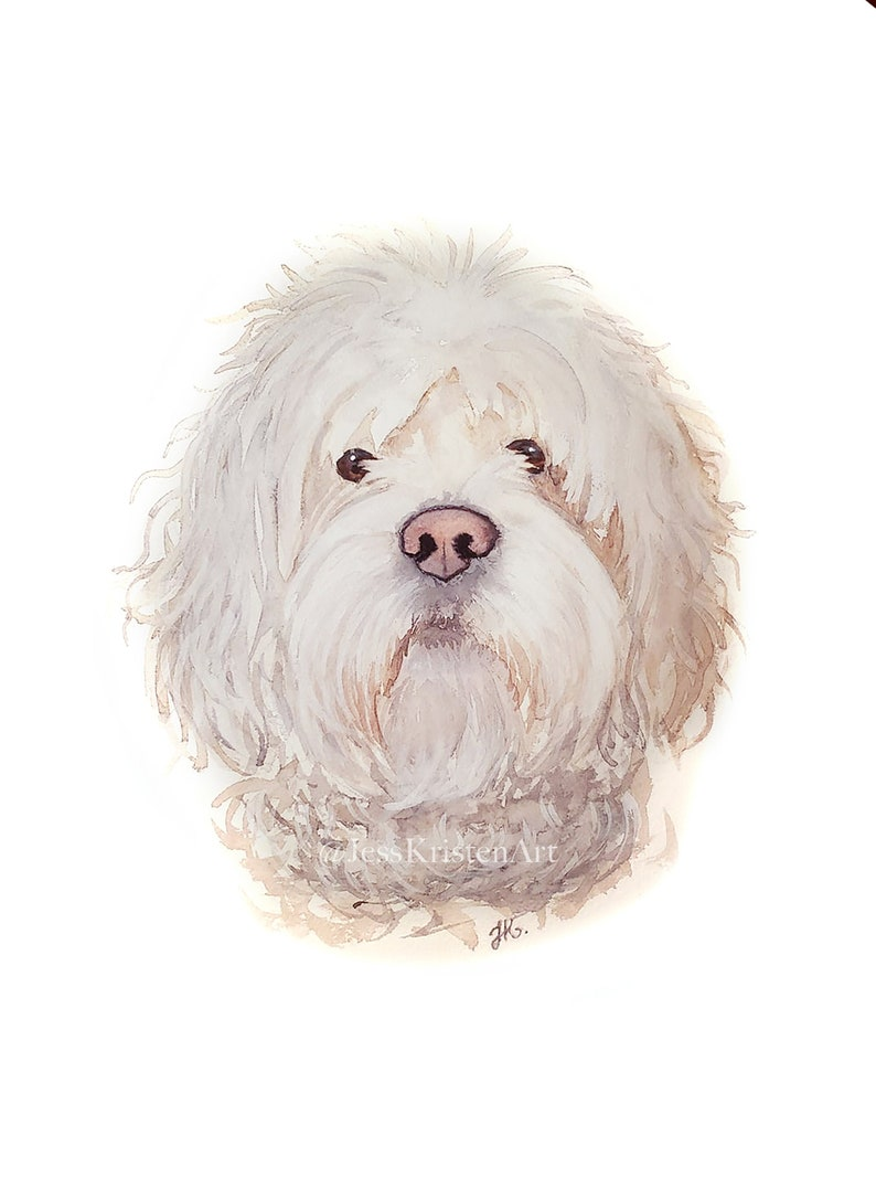 Custom Hand-painted Watercolor Maltipoo Portrait from Photo image 0