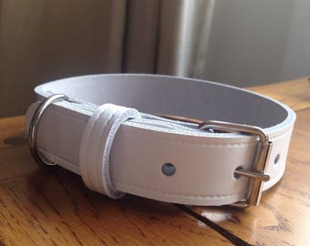 Plain white leather dog house or wedding collar with D ring