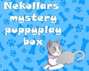 Mystery Box & Collar