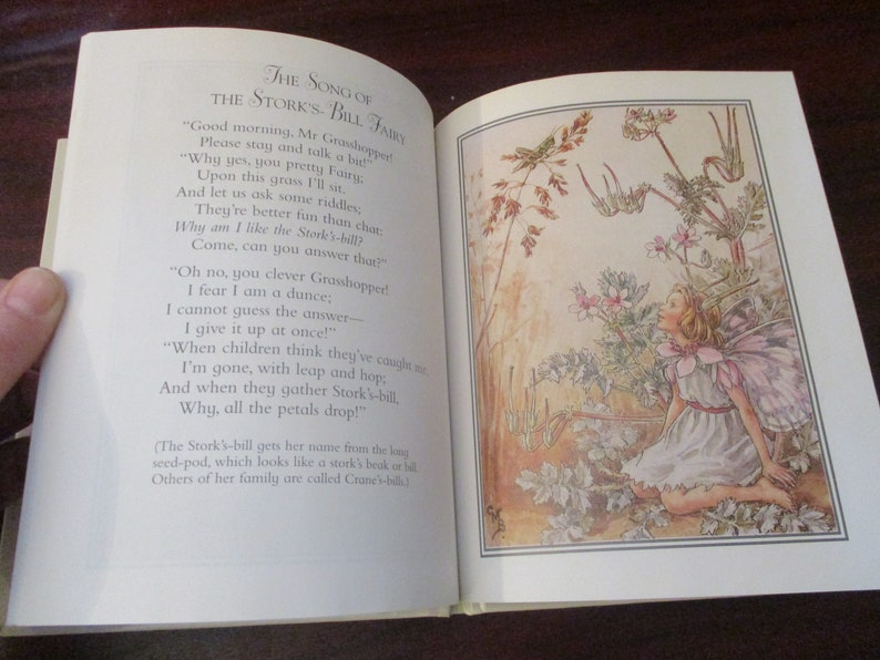 The Flower Fairies - Flower Fairies of the Wayside - Cicely Mary Barker  Flower Fairy Book