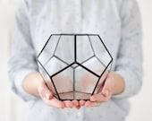 Geometric glass terrarium for succulents display box indoor planter black box geometric vases stained glass terrarium geometric (S10)